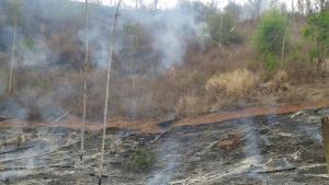 Produtor rural tentou realizar queimada controlada, mas chamas se espalharam e atingiram área equivalente a cinco campos de futebol. Ele foi autuado por incêndio culposo