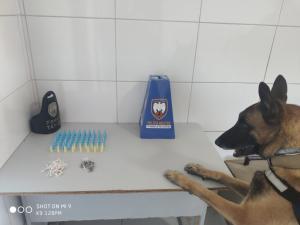 Os entorpecentes foram encontrados com a ajuda de um cão farejador; nenhum suspeito foi detido