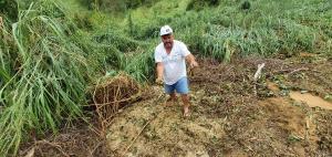 Segundo a Defesa Civil, alguns produtores perderam toda safra de café conilon faltando menos de um mês para o início da colheita