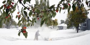 Early Blizzard Wallops Vulnerable Crops