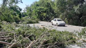 As rajadas de vento da noite anterior derrubaram diversas árvores, que ficaram caídas na rodovia federal. Há restrições em um trecho de 30 quilômetros da BR 262, entre Viana e Marechal Floriano, e em Cariacica também há bloqueios