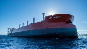 Primeiro mineraleiro com a tecnologia chegou na noite de terça (27) no Porto de Tubarão, em Vitória. Embarcação integrará frota a serviço da Vale a fim de reduzir emissão de CO2