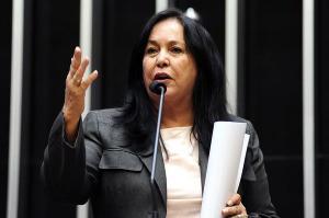 Nos últimos anos, sigla viveu disputas internas e perdeu força. A senadora Rose de Freitas, que assinou recentemente a ficha de filiação, é cotada para assumir a presidência do diretório estadual