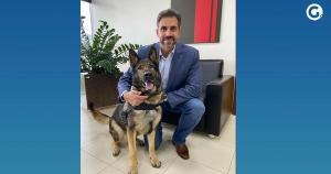 Animal, da raça pastor-alemão, foi emprestado pela Polícia Federal do Rio de Janeiro ao ES
