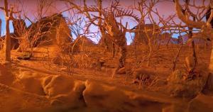 A animação paulistana 'Baiacu', de Luiza Ishikawa, foi uma das premiadas; mostra de curtas segue até 25 de junho