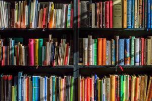 """Prêmio Jabuti deste ano dividiu o romance em duas categorias: """"romance literário"""" e """"romance de entretenimento"""""""