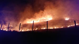 Fogo assustou quem passou na noite desta terça-feira (14) pela ES 166, na localidade de Fazenda do Centro. Bombeiros combateram fogo por 8 horas