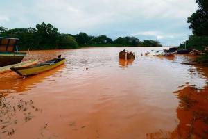 Monitoramento após rompimento da barragem de minério aponta contaminação por metais, desaparecimento de espécies, impacto em praias e manguezais