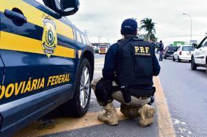 Oportunidades são para cargos de níveis médio e superior. Certames são para o governo federal e para os estados de São Paulo, Tocantins e Pará