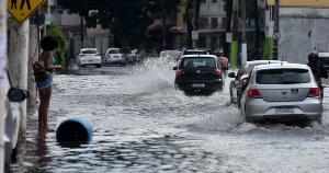 """""""Quando o assunto é água, o canela verde já tem experiência de sobra"""", afirma morador"""