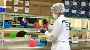 Através de material genético coletado de uma pessoa encontrada morta em 2015, em Vila Velha, Polícia Civil conseguiu localizar um familiar da vítima em Minas Gerais. Este avanço pode significar um importante passo para solucionar casos de desaparecidos