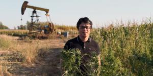 China Lets Its Cannabis Industry Bloom but Says No to Marijuana